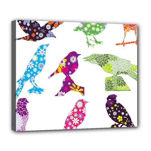 Birds Colorful Floral Funky Deluxe Canvas 24  X 20