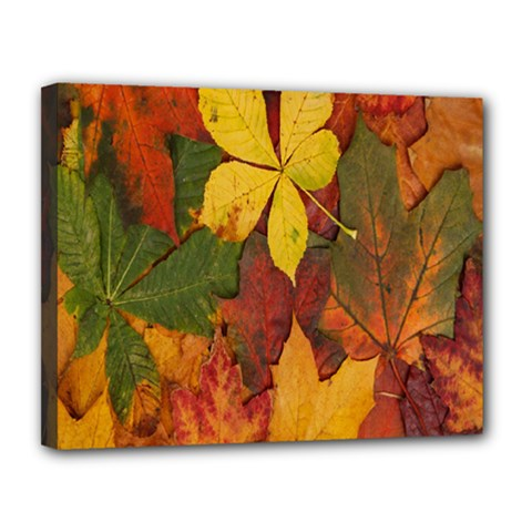 Colorful Autumn Leaves Leaf Background Canvas 14  X 11