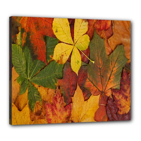 Colorful Autumn Leaves Leaf Background Canvas 24  X 20
