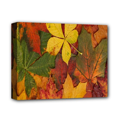 Colorful Autumn Leaves Leaf Background Deluxe Canvas 14  X 11
