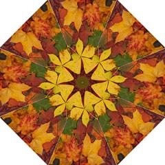 Colorful Autumn Leaves Leaf Background Hook Handle Umbrellas (medium)