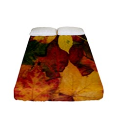 Colorful Autumn Leaves Leaf Background Fitted Sheet (full/ Double Size)