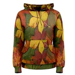 Colorful Autumn Leaves Leaf Background Women s Pullover Hoodie