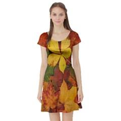Colorful Autumn Leaves Leaf Background Short Sleeve Skater Dress