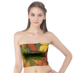 Colorful Autumn Leaves Leaf Background Tube Top