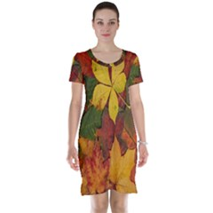 Colorful Autumn Leaves Leaf Background Short Sleeve Nightdress