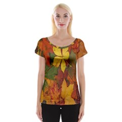 Colorful Autumn Leaves Leaf Background Women s Cap Sleeve Top