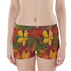 Colorful Autumn Leaves Leaf Background Boyleg Bikini Wrap Bottoms