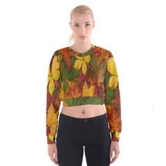 Colorful Autumn Leaves Leaf Background Women s Cropped Sweatshirt