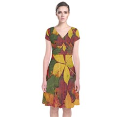 Colorful Autumn Leaves Leaf Background Short Sleeve Front Wrap Dress