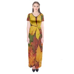 Colorful Autumn Leaves Leaf Background Short Sleeve Maxi Dress