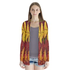 Colorful Autumn Leaves Leaf Background Cardigans