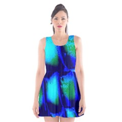 Blue Scales Pattern Background Scoop Neck Skater Dress