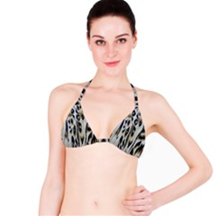 Tiger Background Fabric Animal Motifs Bikini Top