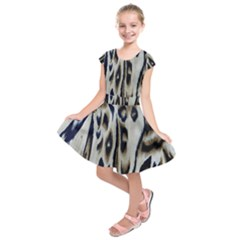 Tiger Background Fabric Animal Motifs Kids  Short Sleeve Dress