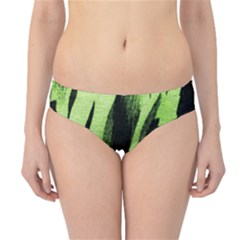 Green Tiger Background Fabric Animal Motifs Hipster Bikini Bottoms