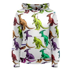 Multicolor Dinosaur Background Women s Pullover Hoodie
