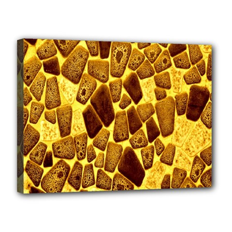 Yellow Cast Background Canvas 16  X 12