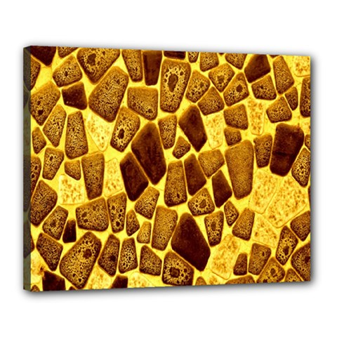Yellow Cast Background Canvas 20  x 16