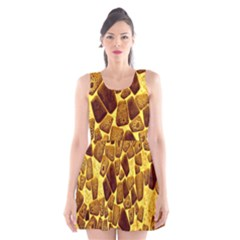 Yellow Cast Background Scoop Neck Skater Dress