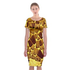 Yellow Cast Background Classic Short Sleeve Midi Dress