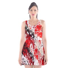 Red Fractal Art Scoop Neck Skater Dress