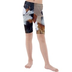 Bernese Mountain Dog Begging Kids  Mid Length Swim Shorts