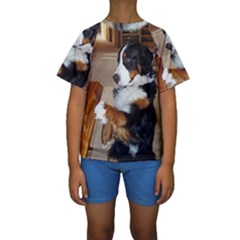 Bernese Mountain Dog Begging Kids  Short Sleeve Swimwear