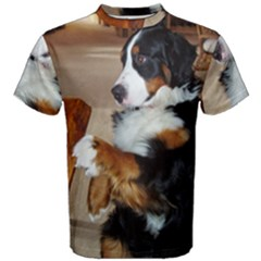 Bernese Mountain Dog Begging Men s Cotton Tee