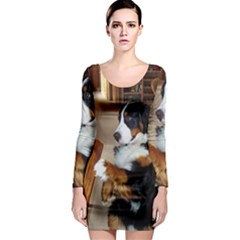 Bernese Mountain Dog Begging Long Sleeve Bodycon Dress