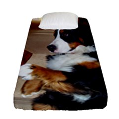 Bernese Mountain Dog Begging Fitted Sheet (Single Size)