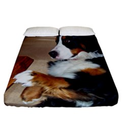 Bernese Mountain Dog Begging Fitted Sheet (California King Size)