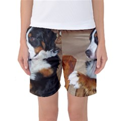 Bernese Mountain Dog Begging Women s Basketball Shorts