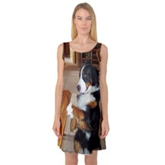 Bernese Mountain Dog Begging Sleeveless Satin Nightdress