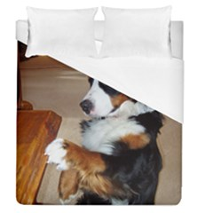 Bernese Mountain Dog Begging Duvet Cover (Queen Size)