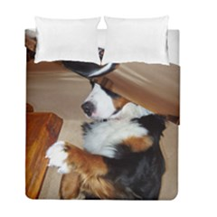 Bernese Mountain Dog Begging Duvet Cover Double Side (Full/ Double Size)