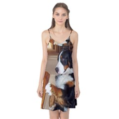 Bernese Mountain Dog Begging Camis Nightgown