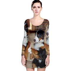 Bernese Mountain Dog Begging Long Sleeve Velvet Bodycon Dress