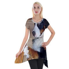 Bernese Mountain Dog Begging Short Sleeve Side Drop Tunic
