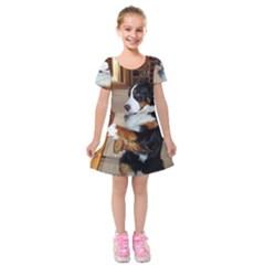 Bernese Mountain Dog Begging Kids  Short Sleeve Velvet Dress