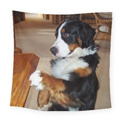Bernese Mountain Dog Begging Square Tapestry (Large)