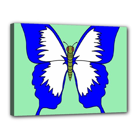 Draw Butterfly Green Blue White Fly Animals Canvas 16  x 12