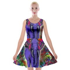Abstract Elephant With Butterfly Ears Colorful Galaxy Velvet Skater Dress