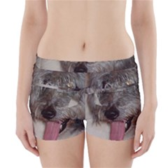 Old English Sheepdog Boyleg Bikini Wrap Bottoms