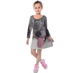 Old English Sheepdog Kids  Long Sleeve Velvet Dress
