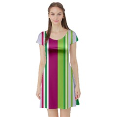 Beautiful Multi Colored Bright Stripes Pattern Wallpaper Background Short Sleeve Skater Dress