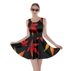 Colorful Autumn Leaves On Black Background Skater Dress