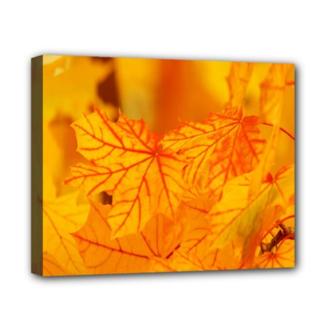 Bright Yellow Autumn Leaves Canvas 10  x 8