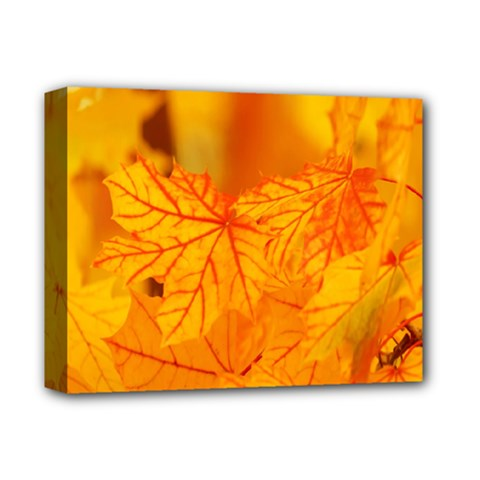 Bright Yellow Autumn Leaves Deluxe Canvas 14  X 11
