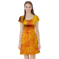 Bright Yellow Autumn Leaves Short Sleeve Skater Dress